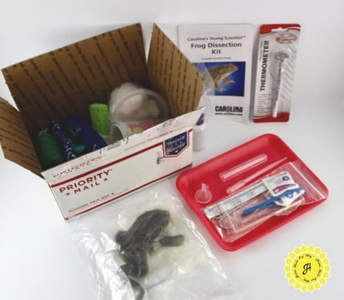 materials for lab experiments