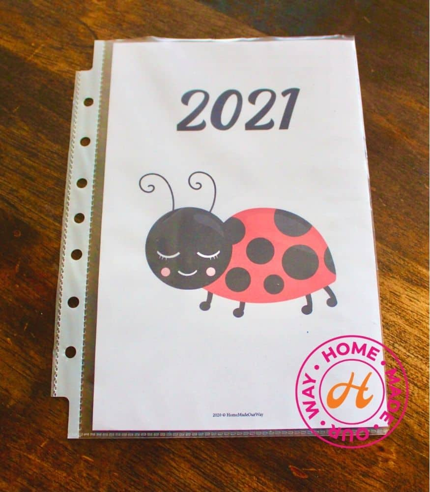ladybug cover page for mini binder and letter size planner pages